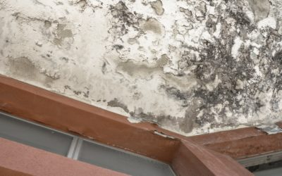 Water damage restoration tips for walls and ceilings