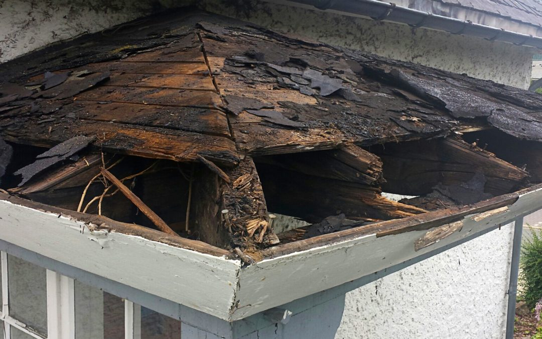 Damaged Roof due to leaks