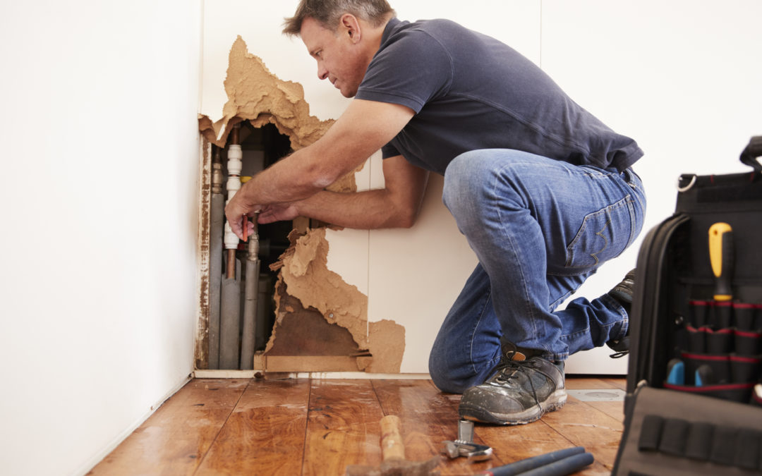 How To Find The Right Encinitas Water Damage Specialist?