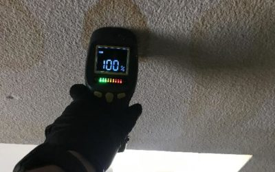 What Do You Do if Your Ceiling Has Water Damage?