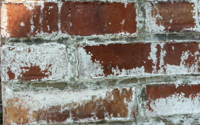 What is Efflorescence and How to Deal with It